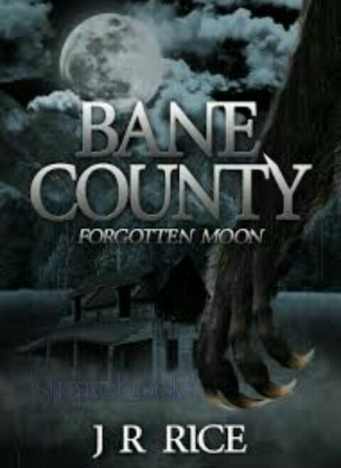Babe County By J R Rice